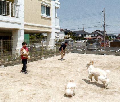 地域の方々が犬を連れて遊びに来てくれます。