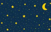 ハヤシライスと流星。☆彡